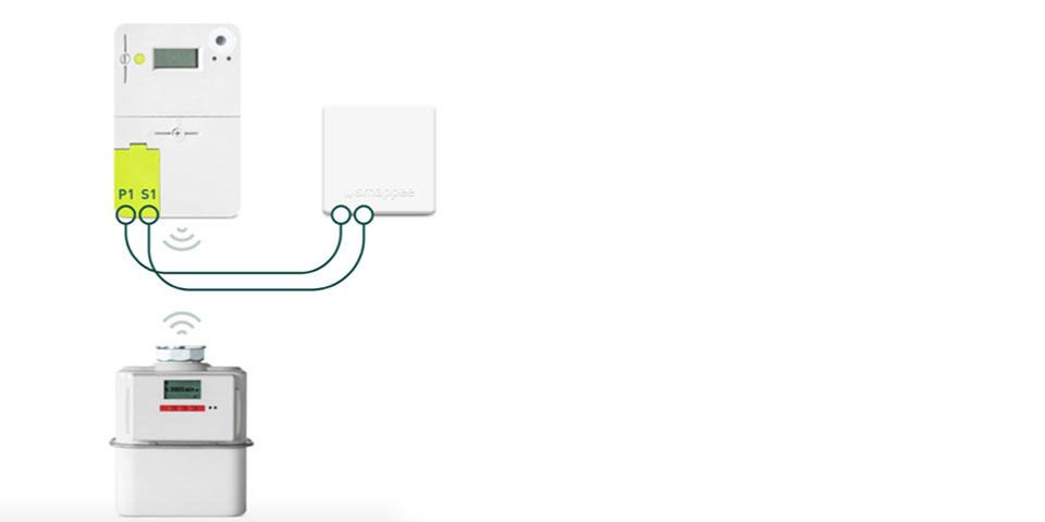 smappee-p1s1-module-installatie-kopieren